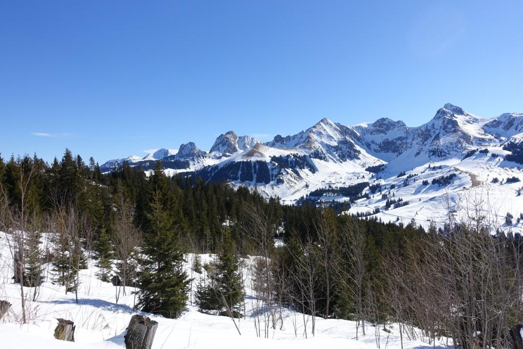 Immer im Blick - die markante Gipfelkette am Gantrisch