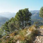 Abstieg vom Puig de Maria