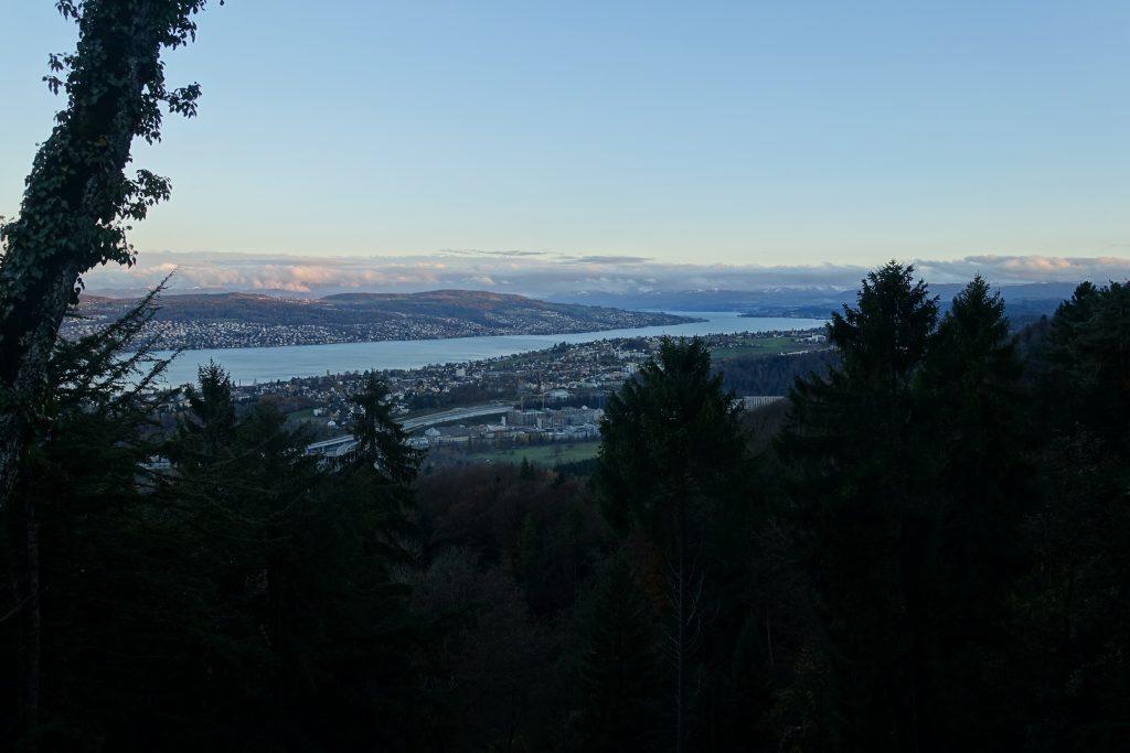 Zürichsee in Abendstimmung
