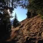 Panoramaweg 1