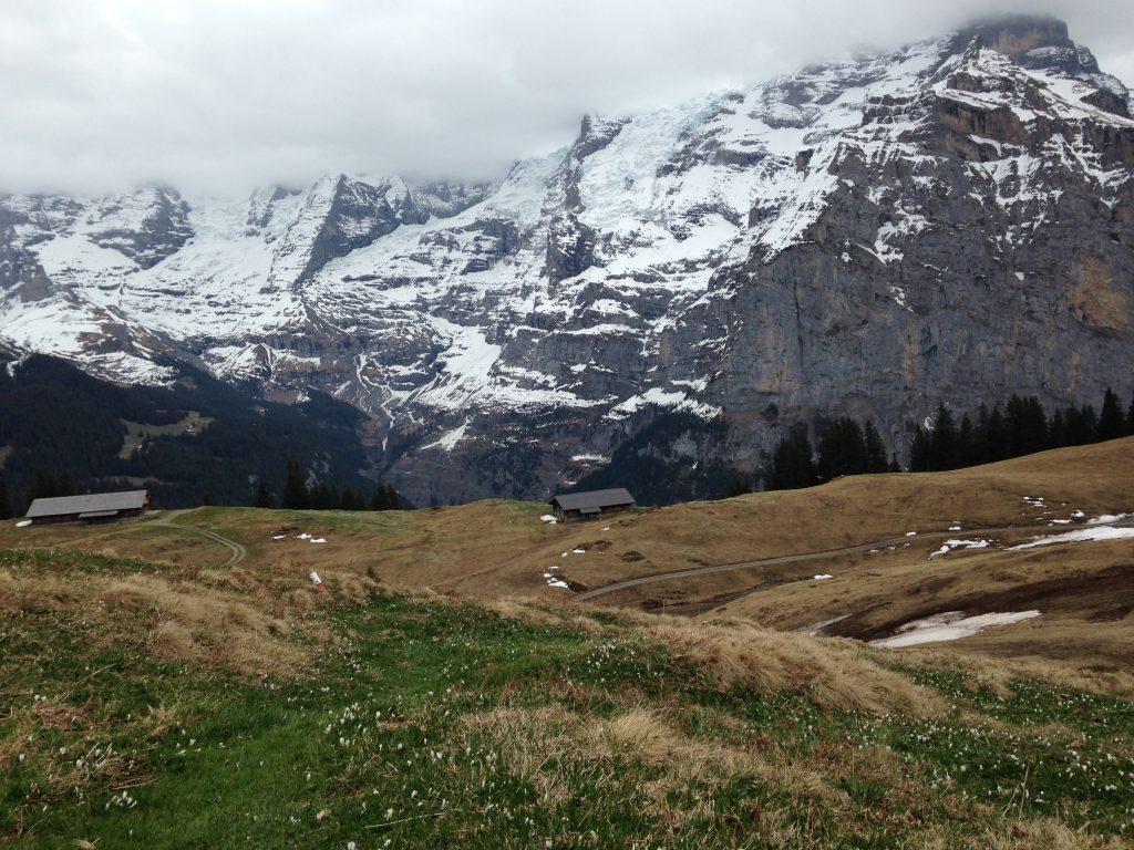 Alles dabei in den Bergen - Nebel, vereinzelte Schneefelder, Blumen auf dem Weg und ein schöner Trail