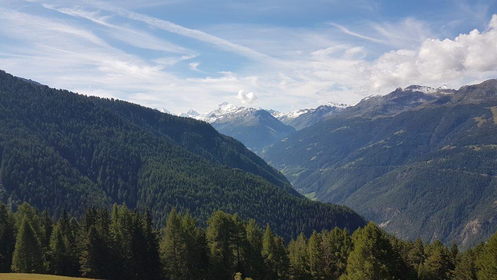 Nach der erste Anstrengung lichtete sich der Wald - und das Matterhorn wurde sichtbar