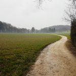 Trailrun pur durch eine fotoeske Landschaft