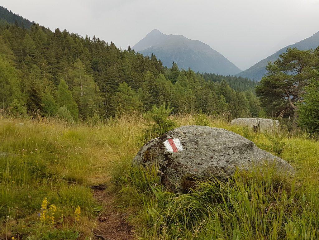 Noch ist es der Nationalpark bei Zernez etwas wolkenverhangen, schön ist es aber jetzt schon