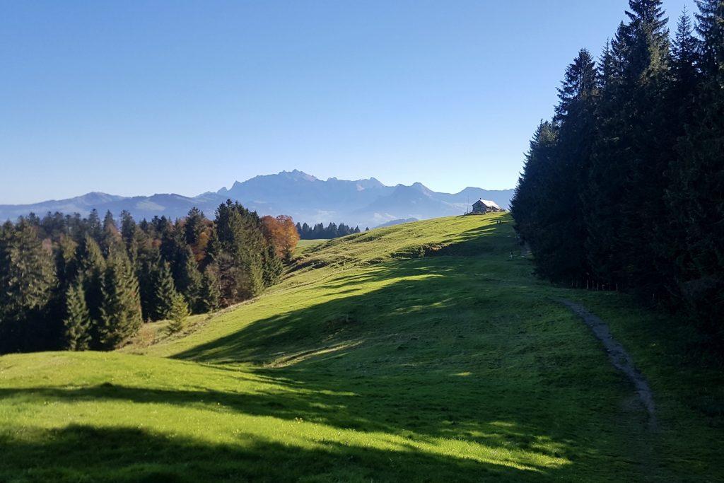 Das Alpsteingebirge thront im Hintergrund, im Vordergrund das gemütliche Berggasthaus Oberbächen