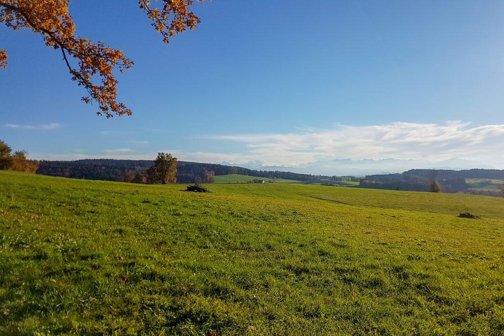 Sonntagswetter mit Ausblick auf die Glarner Alpen und mehr